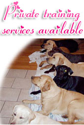 Private training services available